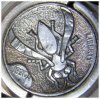 Yellow_Jacket_Hobo_Nickel_Tutorial_5.jpg